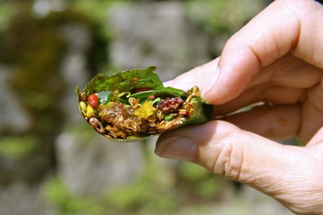 Components of paan
